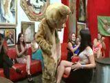 El oso vacilón se las acabará follando a todas seguro !! - Despedidas De Soltera
